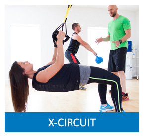 Click Here for X-Circuit